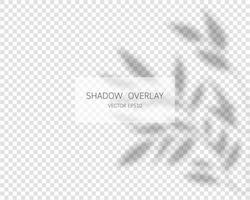 Shadow overlay effect. Natural shadows isolated vector