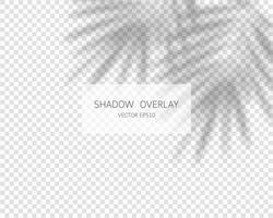 efecto de superposición de sombras. sombras naturales aisladas vector