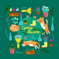 Collection of spring elements with cats in different poses, set of beautiful spring flowers and compositions, floral vector objects in cartoon style, red fat cat.