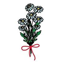 Bouquet of daisies tied with a red ribbon, arrangement of flowers, floral design, vector flowers in the style of hand draw, doodle.