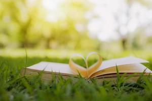 Open book with heart shape on green grass in park