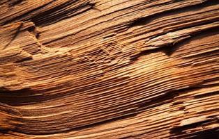 Rough rustic wood photo