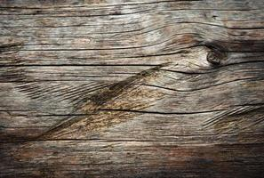 Detail of wooden tree trunk with grooves