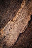 detalle de piedra marrón oscuro foto