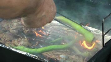Chicken and Green Pepper on a Barbecue Fire