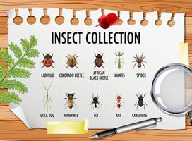 conjunto de colección de insectos con elementos estacionarios sobre la mesa vector