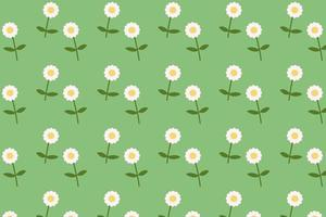 Daisy blooming pattern flat style background vector.Flower textile with green background vector