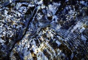 Dark water ripples photo