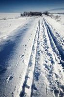 Cross-country ski run through snowy landscape