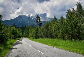 Asphalt road through mountain forest with peaks