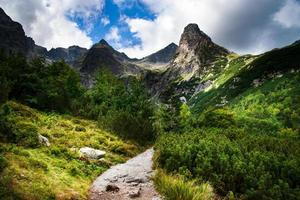 Walkway into a valley photo
