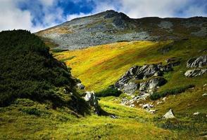 Green grass on mountains photo