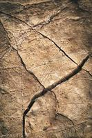 piedra marrón agrietada foto
