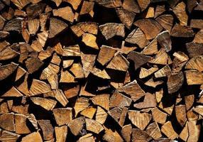 Rustic wood logs photo