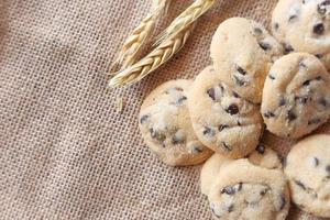 Freshly baked chocolate chip cookies photo