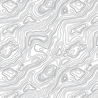 Abstract topographic map design vector