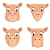 conjunto de camellos de dibujos animados. vector
