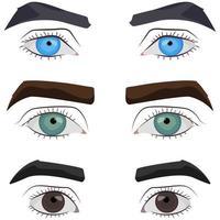 conjunto de ojos masculinos. vector