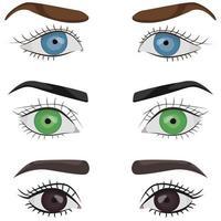 conjunto de ojos femeninos. vector