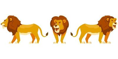 Lion in different poses.