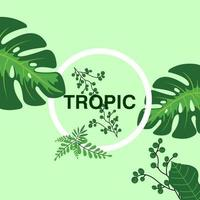 tropic background design vector illustration