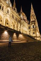 Budapest, Hungary 2017- The Hungarian Parliament in Budapest on the Danube in the night lights of the street lamps photo