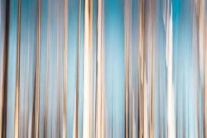 Fondo abstracto de abedules con cielo azul foto