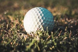 Pelota de golf blanca tumbado en la hierba helada en la luz del sol