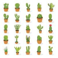 plantas de cactus en maceta vector