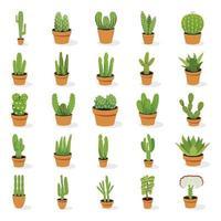 plantas de cactus de interior vector