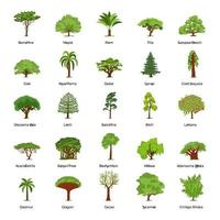 Famous Trees Vector
