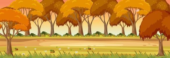 Autumn season with nature park at sunset time horizontal scene vector