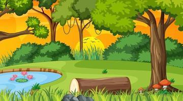 Escena de la naturaleza del bosque con estanque y muchos árboles al atardecer vector