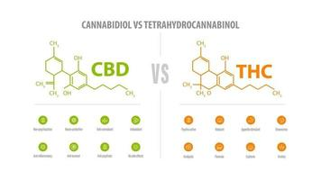 CBD vs THC, list of differences with icons and chemical formulas. White banner with comparison CBD and THC. vector