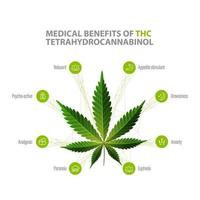 Tetrahydrocannabinol Benefits, white information poster with icons of benefits and green leafs of cannabis vector