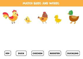 Matching words game with cute farm birds. vector