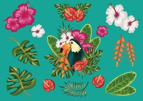 tropical friuts and toucan bird and sunset beach vibe vector