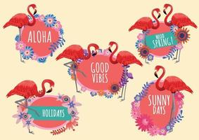 flamingo and flowers labels and text hello spring seasons vector