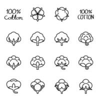 Cotton flower isolated icon vector image.