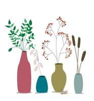 vases with dry flowers and plants. Ceramic with died eucalyptus leaves. vector