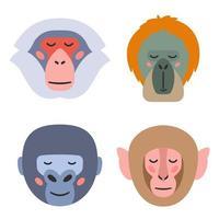 Vector illustration of muzzles of various monkeys