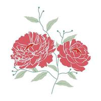 Vector illustration of peony flowers with branch and leaf
