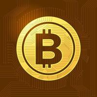 Bitcoin cryptocurrency symbol vector