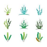 conjunto de ilustraciones de imágenes de logotipo de algas vector