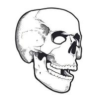 Engraving Style Skull With Open Mouth vector