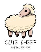 Vector of cute sheep eps 10.