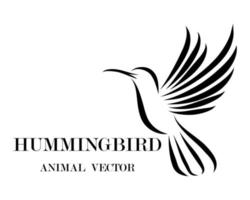 colibrí volador arte lineal eps 10 vector