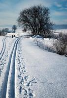 Cross-country route in snow photo