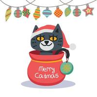 Illustration of a Christmas cat with background ornaments vector