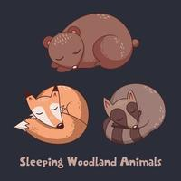Collection of three sleeping woodland animals vector